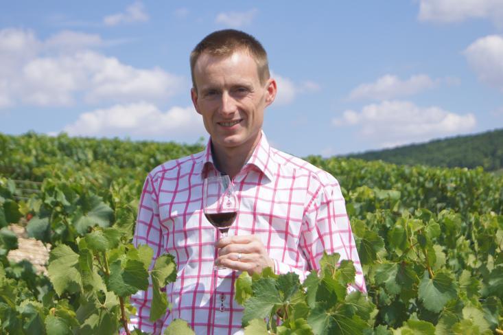 Aux secrets des vins